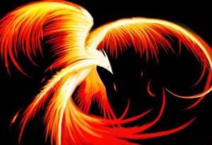 The phoenixbird